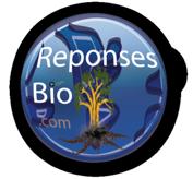 Reponses Bio
