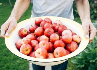 quels aliments sont les plus chargés en pesticides ?
