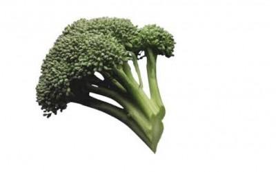 Le brocolis : Saveur & Santé !