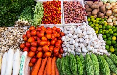 recette végétarienne légumes farcis au four