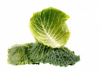 terrine de légumes au chou - recette végétarienne