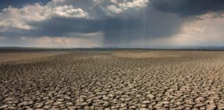 claude bourguignon alerte sur l'état des sols