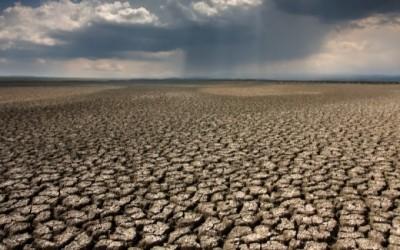 Claude Bourguignon : Alerte sur l'état des sols
