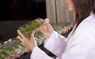 L'herboristerie revient… mais dans quel état ?