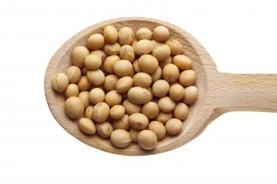 protéines de soja