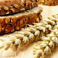 apprendre à faire son pain / reponsesbio