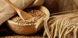 Quelles céréales consommer cet hiver ?