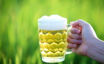 La bière biologique a-t-elle des vertus pour la santé ?