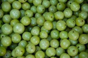 l'alma, une excellente source d'antioxydants