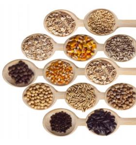 fibres diététique cholestérol