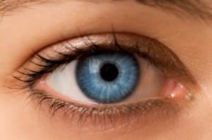 phytothérapie pour les troubles ophtalmologiques