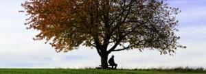 comment soigner les problèmes psychologiques avec l'homéopathie