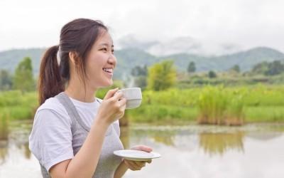 Mincir grâce au thé rouge