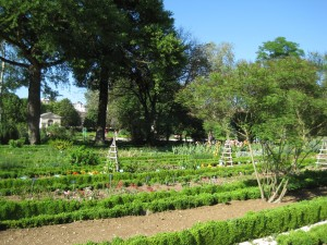 Jardin botanique de l'arquebuse de Dijon
