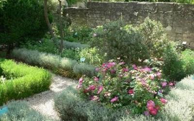 Les merveilleux jardins de plantes médicinales