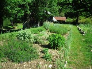 jardin botanique d'arvières