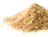 germe de blé biologique