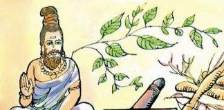 medecine ayurvedique indienne