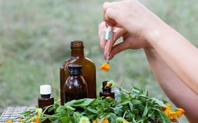 La médecine traditionnelle européenne