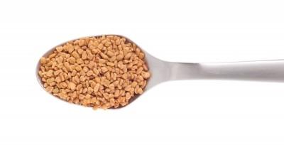 diététique chinoise, nutrition consciente: herbes et épices  le fenurec