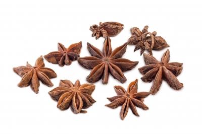 vertus thérapeutiques de la badiane ou anis étoilée