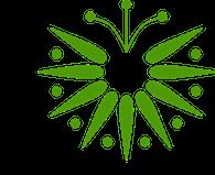 graphisme-fleur-verte-stylisee
