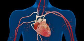 comment faire baisser taux de cholestérol avec les médecines naturelles ?