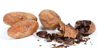 quels sont les bienfaits du cacao ?