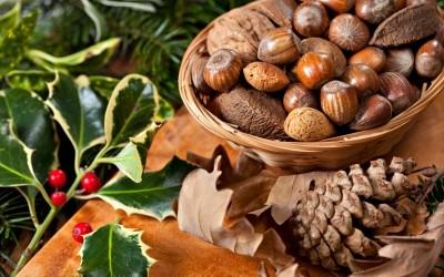 Pourquoi manger des noix et des amandes?