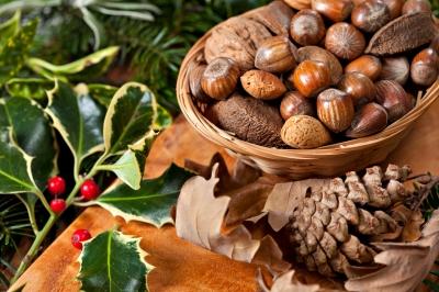 pourquoi manger des noix, amandes, noisettes, graines de sésame et de tournesol...