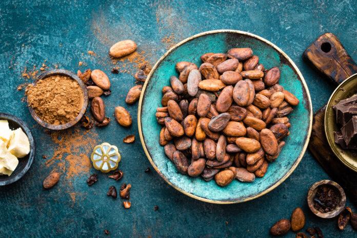 polyphenols du cacao réponses bio