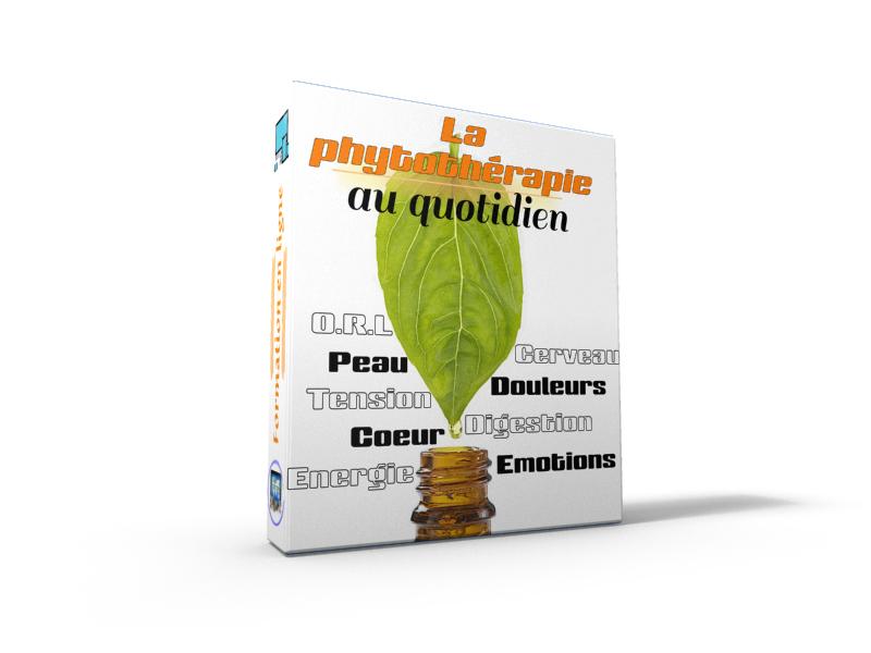 La phytothérapie au quotidien formation en ligne pour apprendre à utiliser les plantes pour se soigner