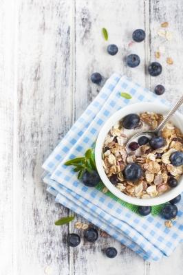 porridge cru recette petit déjeuner vivant