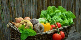 sources végétales de calcium
