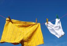 lingerie et sous-vêtements en coton bio