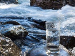 L'eau dynamisée régénère les organismes vivants