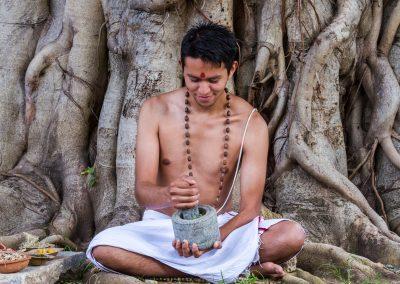 Le Brahmi, la plante des dieux