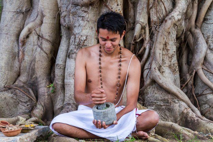 bacopa monnieri brahmi fonctions cognitives tradition védique
