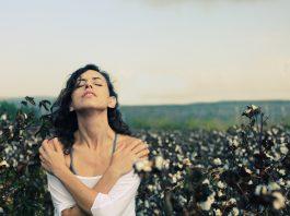 Le véritable coton biologique, équitable, label GOTS et petits fabricants
