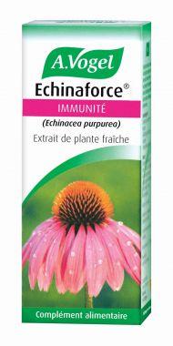 Echinacée stimulant immunitaire