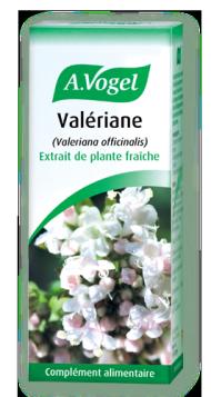 Extrait de plante fraiche de valériane pour l'insomnie et le stress