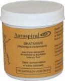 Shatavari plante des femmes : fécondité, grossesse, ménopause, fausse couche, syndrome prémenstruel...