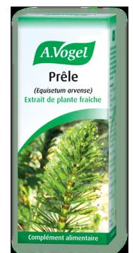 La Prêle, meilleure source naturelle de silice