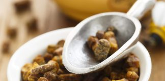 Pain d'abeilles : composition et bienfaits