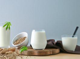 recettes au chanvre végétariennes