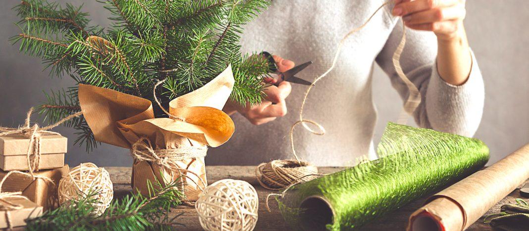 cadeaux bio ecolo noel réponses bio