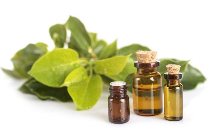 huile essentielle ravintsara reponsesbio