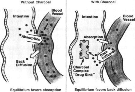 Diffusion de médicaments dans la sphère sanguine avec et sans usage de charbon activé